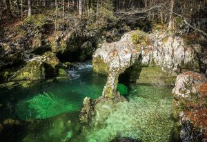 The elephant in Mostnica gorge