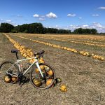 gravel bike and pumpking pies